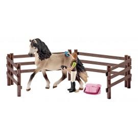 Набор для ухода за лошадьми, Андалузский