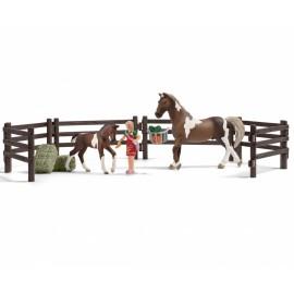 Набор кормление лошадей