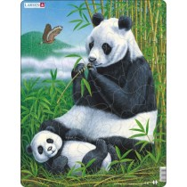D5 - Панда