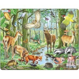 Пазл Европейский лес, 40 деталей