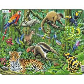 Пазл Южно-американские тропики, 70 деталей